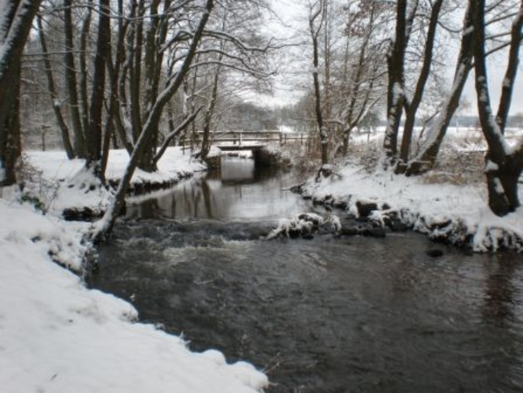 Winter landscape in the area