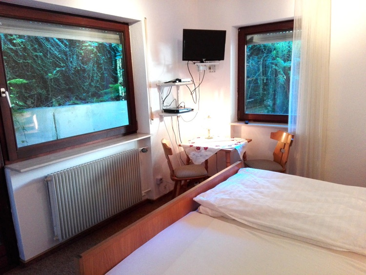 double room with TV and streaming box
