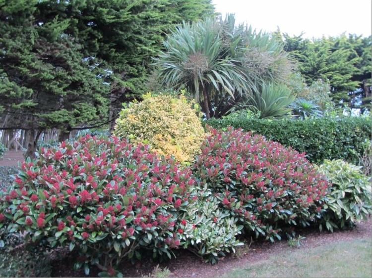Grandiosem Park 8.500qm mit Pflanzenarten Gewächsen lädt die Flora als grüne Oase zum Flanieren