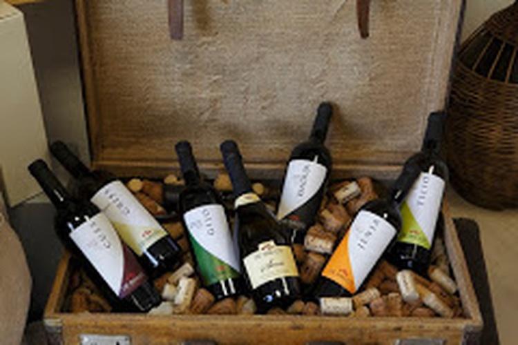 The wines of Pedavena