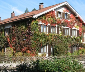 Appartement Fuessen