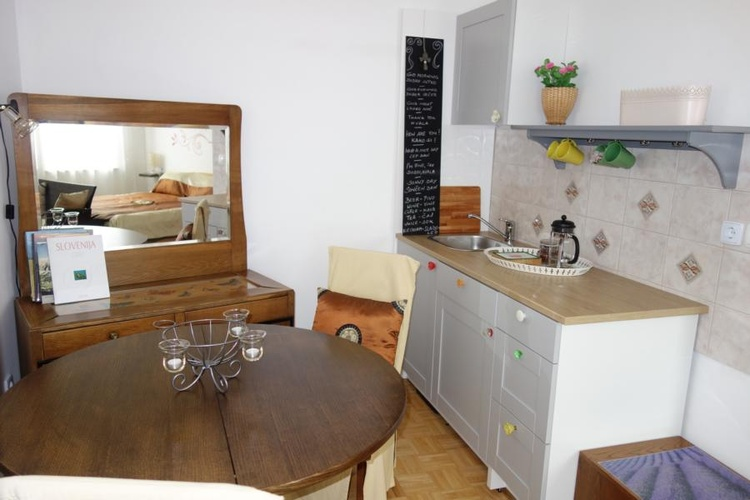 Studio living area with kitchenette (bed see mirror)