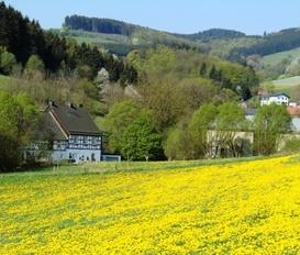 Appartement Medebach-Titmaringhausen