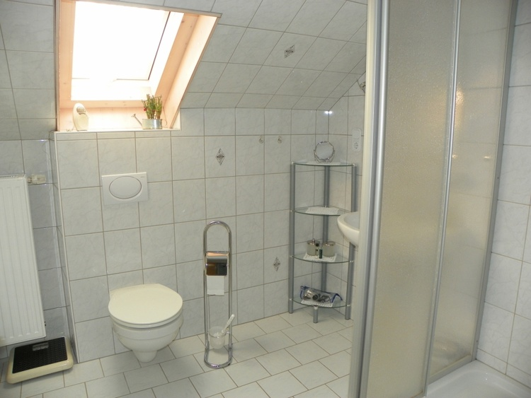 shower with basin and WC