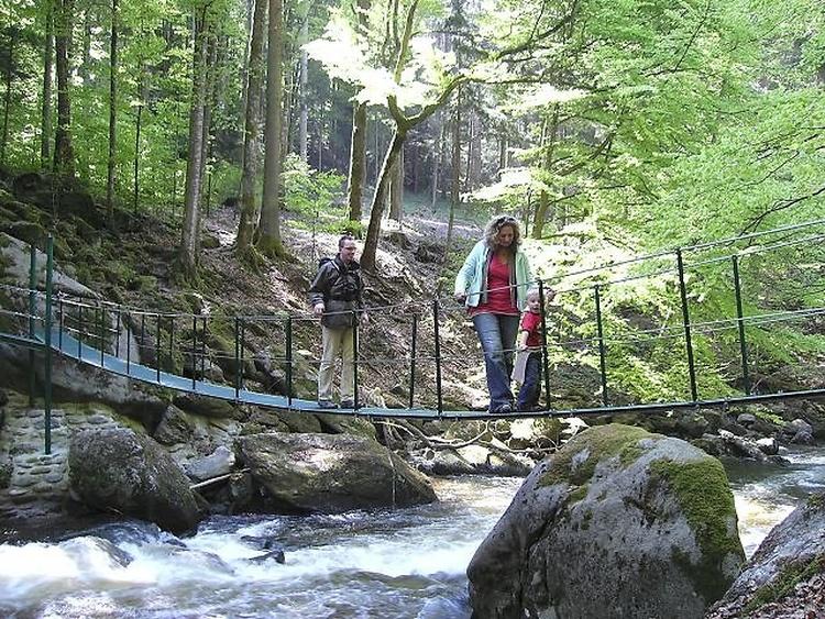 Wildbachklamm Buchberger Leite