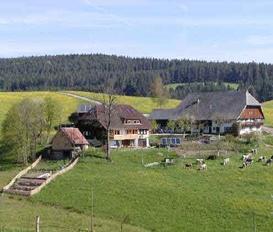 Appartement Schramberg-Tennenbronn