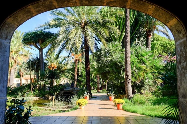 Weg durch den Garten