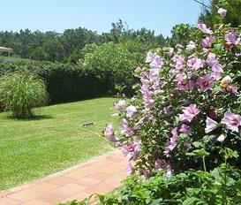 accommodation Praia do Bom Sucesso
