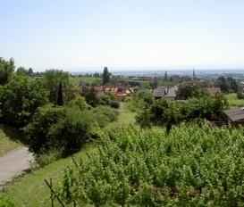 room Mittelbergheim